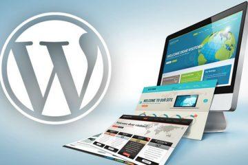 WordPress for Next Website